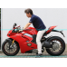Lowdown link plate for Ducati