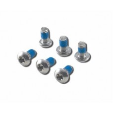 BICYCLE DISK SCREWS